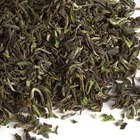 TD 11: Tindharia Estate 1st Fl. Darjeeling FTGFOP1 from Upton Tea Imports