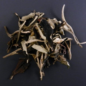 White Pu Erh from Tiberias Tea