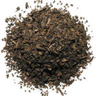 Roasted Yerba Mat from Silk Road