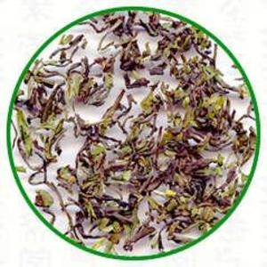 Darjeeling First Flush Hilton 2012 from Dobra Tea