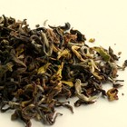 2012 Darjeeling First Flush Thurbo Oolong Special from DarjeelingTeaXpress