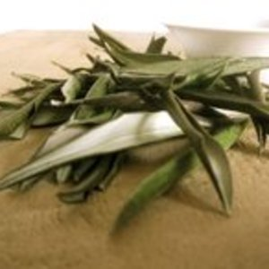 (English) Olive Leaf from Rare Tea Company