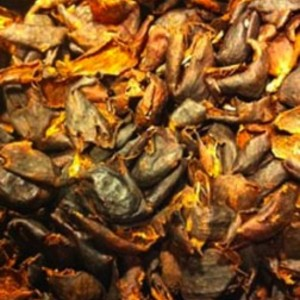 Cascara Tea from Stumptown Coffee Roasters