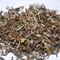 Thurbo clonal Exotica/White tea/ex 23/2nd flush 2012 Darjeeling tea from Tea Emporium