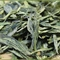 Dragon Well Long Jing Supreme from Tealux