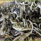 Imperial Pure Old Tree Yue Guan Bai Moon Light White from Tealux