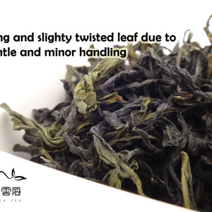 Taiwan Wenshan Pouchong Oolong Tea - Fragrance of Orchid from Nuvola Tea