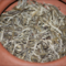 Silver Bud White Pu-erh - Big Snow Mountain (Da Xue Shan) 2003 from The Phoenix Collection