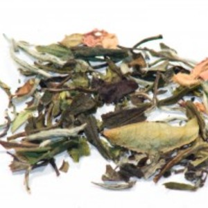 Malibu White Tea from Infinitea Teahouse