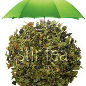 Green Tea Mint from Stir Tea