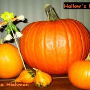 Hallow's Eve from Adagio Teas