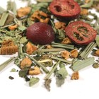 Cranberry Acai - herb from Zen Tea