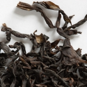 Da Hong Pao 1997 from Camellia Sinensis