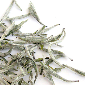 Silver Needle from California Tea House
