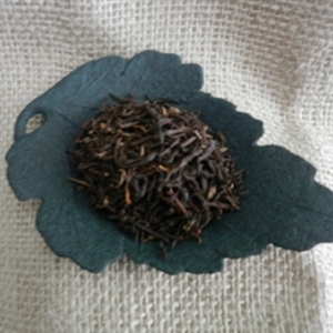 High Country from Trail Lodge Tea