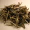 White Leaf and Bud Single Estate White Tea from Teajo Teas