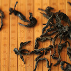 Gold Phoenix - Oolong Tea from DuvalTea