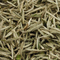 Bai Hao Yin Zhen (Silver Needle) White Tea (Organic) from Seven Cups