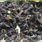 Oriental Beauty Earl Grey from Tealux