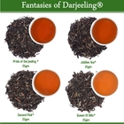 Fantasies Of Darjeeling Sampler (4x25gm) by Golden Tips Tea from Golden Tips Teas