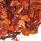 Hibiscus Rose from The Persimmon Tree Tea Company