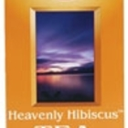 Heavenly Hibiscus from Now Foods