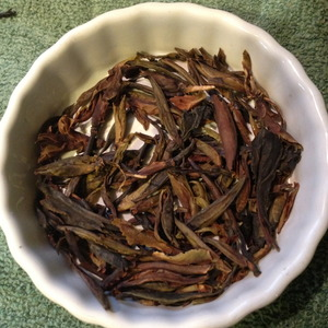 Master Han's Ancient Forest Yabao from Verdant Tea (Special)