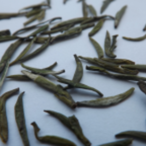 Mengding Yellow Buds from tea-adventure