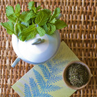 Organic Peppermint from Divinitea