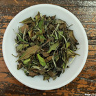 2012 Fu Ding Bai Cha' from China Cha Dao