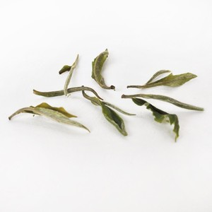 Arya Pearl First Flush White Darjeeling (Organic) from Canton Tea Co