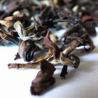 Formosa Oriental Beauty Oolong (White Tip Oolong) from Mantra Tea