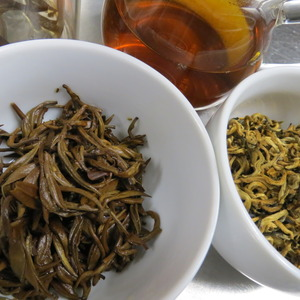 Imperial Mojiang Golden Bud Yunnan Tea 2012 from Yunnan Sourcing