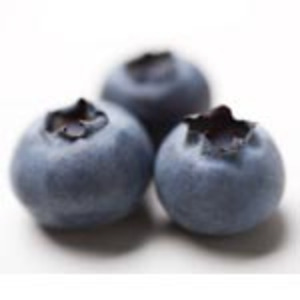 Wild Blueberry from Bar Harbor Tea Company