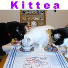 Kittea from 52teas