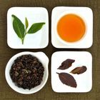 Organic GABA Oolong Tea, Lot # 130 from Taiwan Tea Crafts