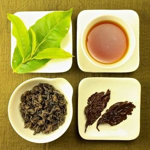 Organic Red Jade GABA Oolong Tea, Lot # 204 from Taiwan Tea Crafts