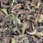 Bai Mu Dan from De Theefabriek (The Tea Factory)