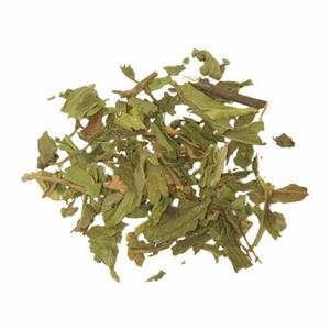 Spearmint from EnjoyingTea.com