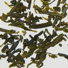 Sencha from Apollo Tea