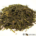 Four Seasons Sencha from Teanobi
