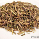 Hojicha Stalk from Teanobi