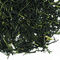 Japan Shincha Kirisakura from TeaGschwendner
