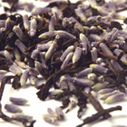 Lavender Earl Grey from Teas Etc