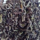 Darjeeling Thurbo 1st Flush 2009 from Grey&#x27;s Teas