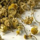 Chamomile Flower from Teas Etc