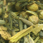 Mentalitea from Remedy Teas