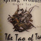 Spring Wonder Green Tea from The Tao of Tea