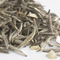 Jasmine Silver Tip Tea from Rare Tea Company
