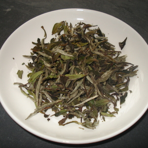 Pai Mu Tan from The Amber Rose Tea Company